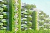 پروژه جنگل شهری در ویتنام: راه حلی به منظور کاهش آلودگی
