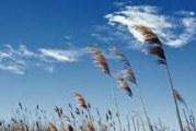 وزش باد نسبتا' شدید همراه با گردوخاک در البرز