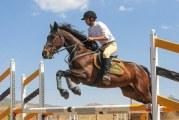 رقابت های سوارکاری البرزپس از ۸ سال تعطیلی از سر گرفته شد
