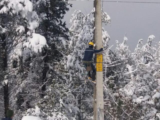 خسارت ۲.۵ میلیاردی برف به شبکه برق جاده چالوس