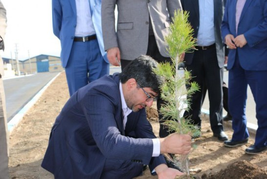 برنامه ریزی برای ایجاد ۴۰۰ هكتار فضای سبز در منطقه ویژه اقتصادی پیام