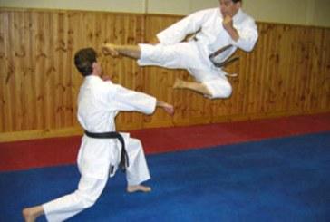 اعلام آمادگی هفت کشور برای مسابقات بین المللی کاراته البرز
