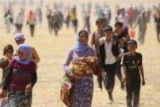 ۳ هزار کودک ایزدی همچنان در چنگ داعش هستند