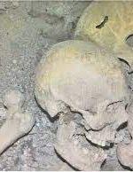 اسکلت کشف شده در ساوجبلاغ باستانی نیست